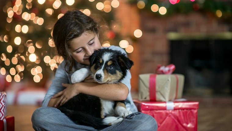 A young kid has their new puppy in their lap and is giving the dog a kiss. There are wrapped presents beside them. There is a Christmas tree in the background.