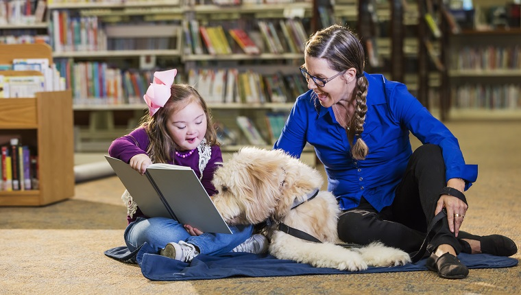 An 8 year old girl with down syndrome reading in the library, sitting next to a therapy dog and trainer, a mature woman in her 50s. The goldendoodle is trained as a reading assistance dog. The child is smiling as she holds the book up for the dog to read.