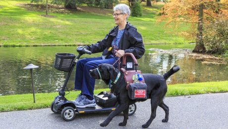 Not Just Tools: Service Dogs Give Owners More Than Physical Care