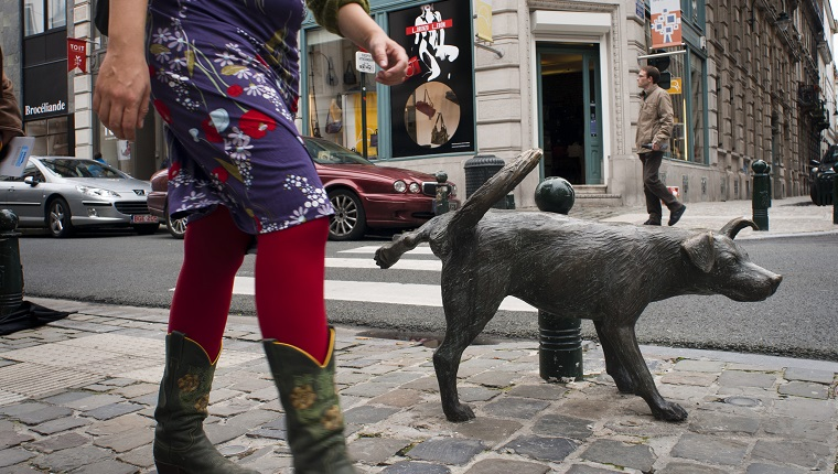 Zinneke Pis bronze statue (Tom Frantzen) of dog urinating, on corner of Rue du Vieux Marche aux Grains. Brussels, Belgium. According to local jargon, this word was used to denote stray dogs wandering around town without owner, but now also names the expression of artistic creation of European citizens, proud to be part of a mix of cultures and roots, at a time when increasing racial tensions arise and where politicians promote fear and hatred to divide citizens.
