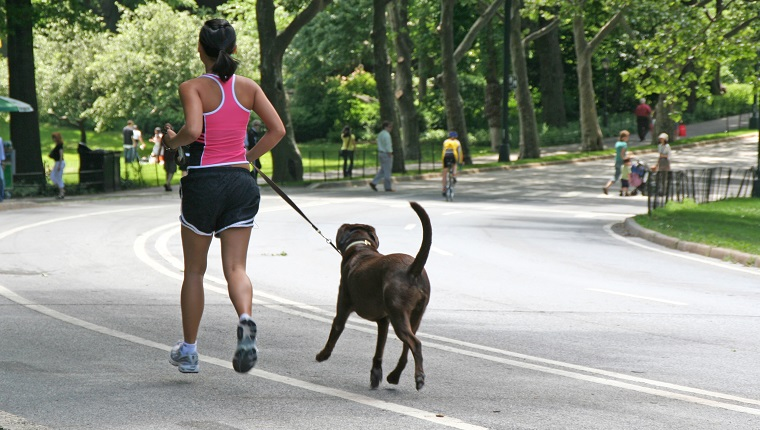 Young woman jogging with dog in Central Park, New York.