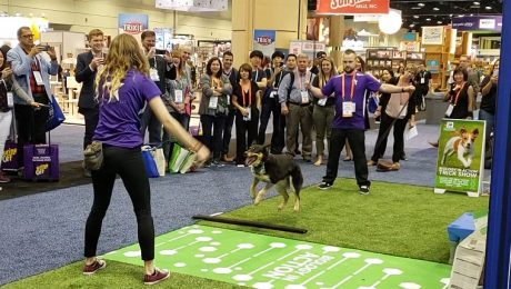 Jump Roping Dogs And Other Things We Saw At Global Pet Expo 2019!