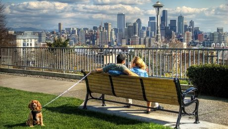 Study Says Seattle Is The Most Dog-Friendly City In The U.S. For 2019