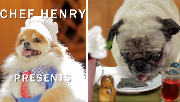 chef henry with doggy dental treats