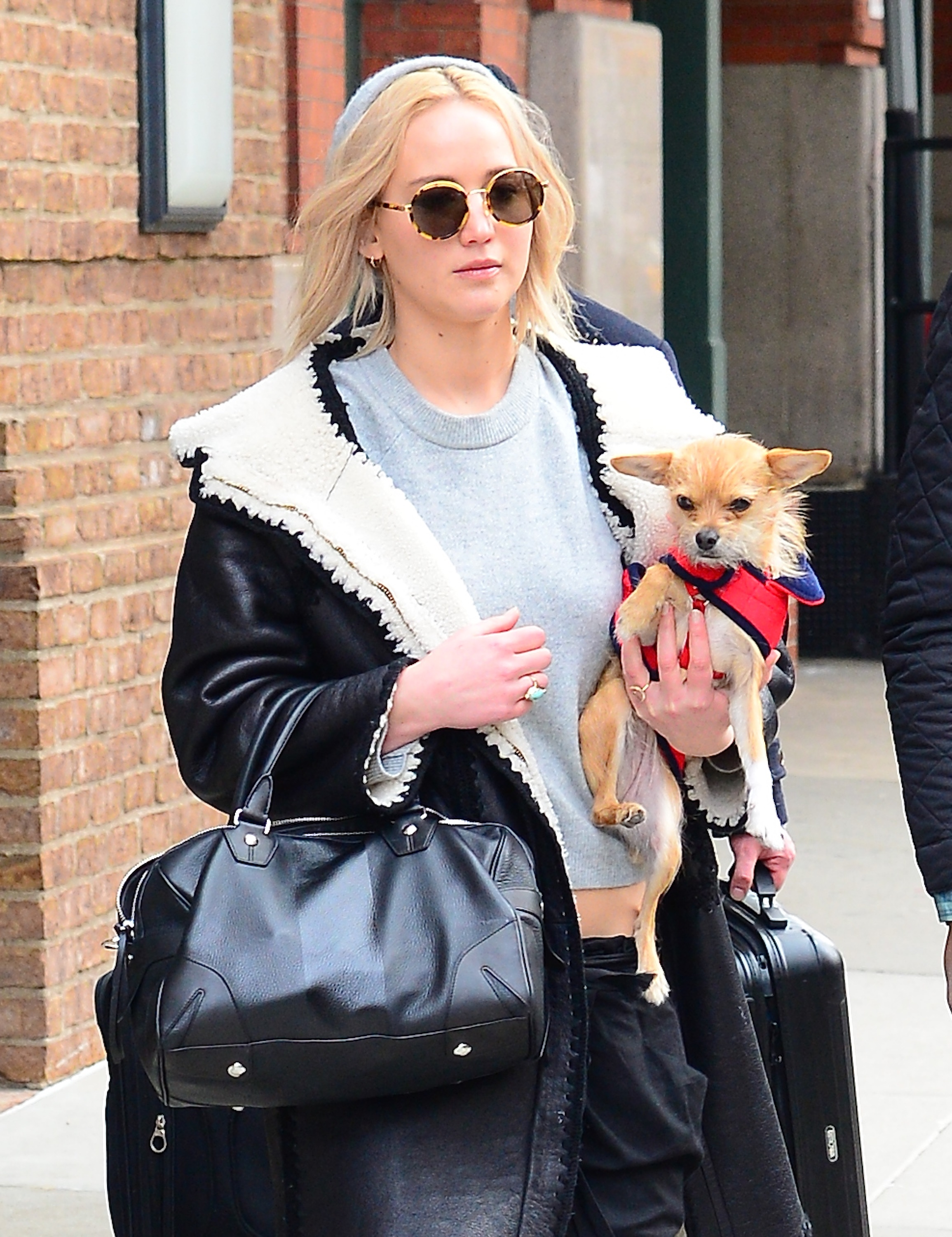 Jennifer Lawrence And Her Pooch, Pippi
