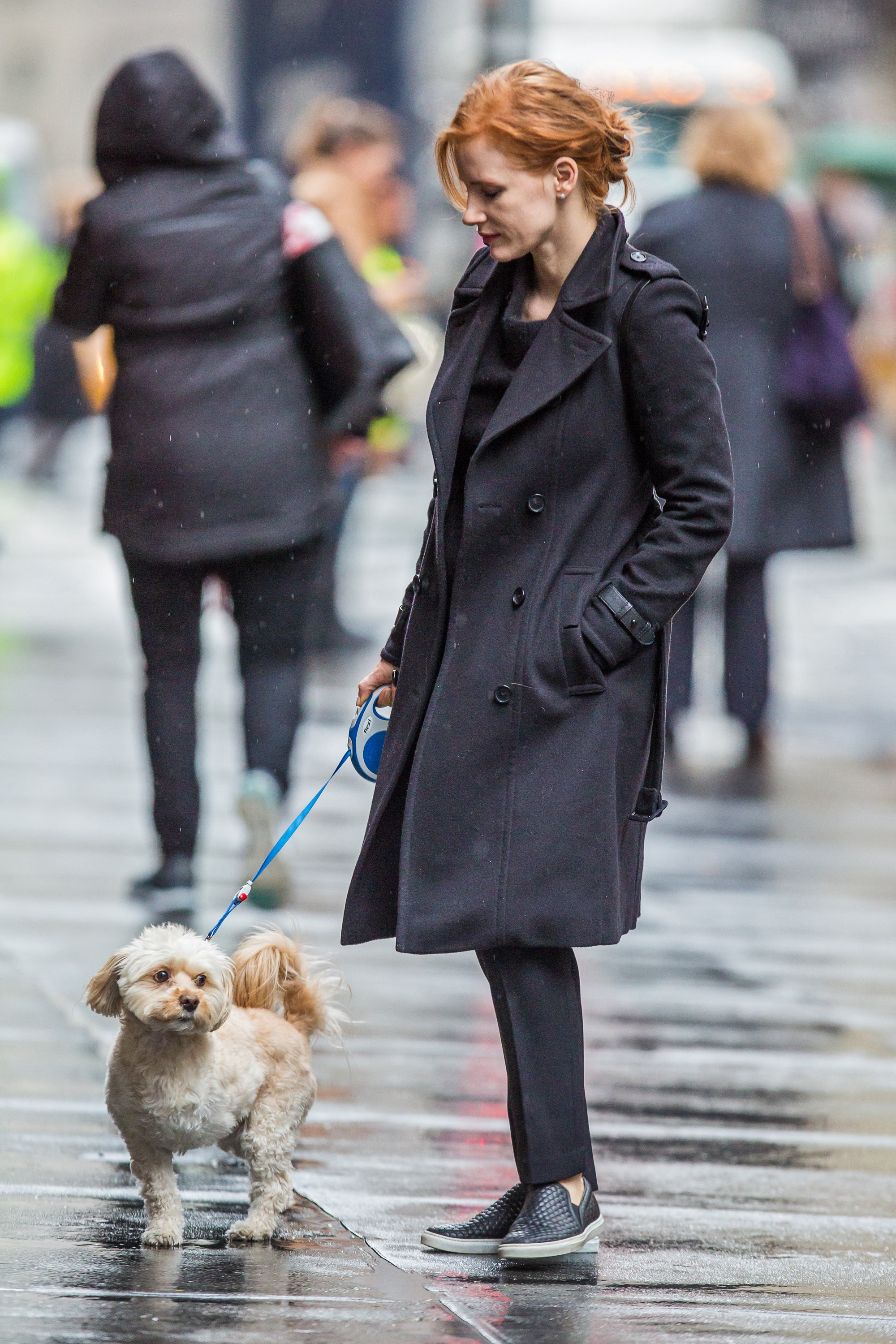 Jessica Chastain And Her Three-Legged Pup, Chaplain