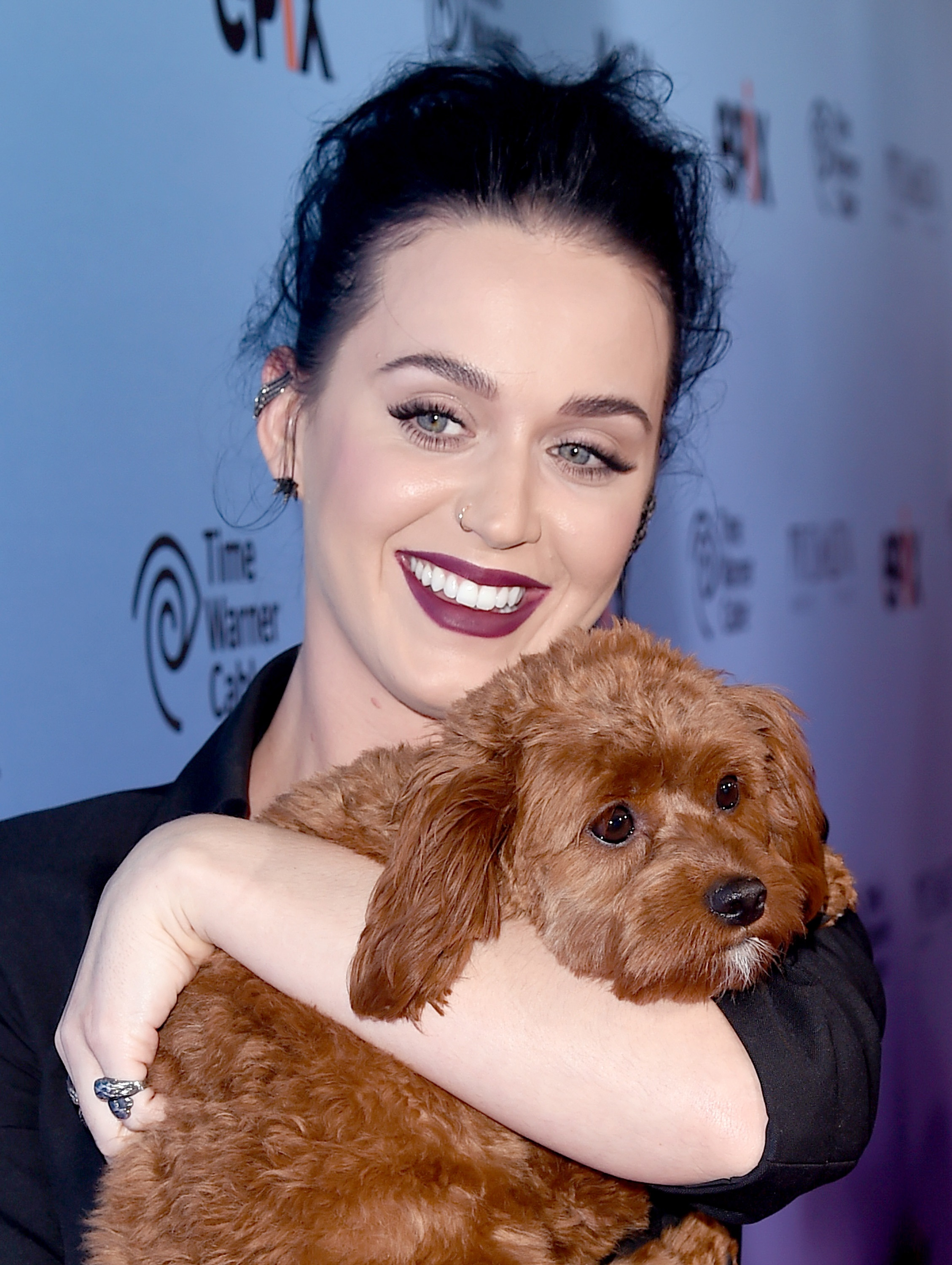 Katy Perry Showing Off Her Dog, Butters